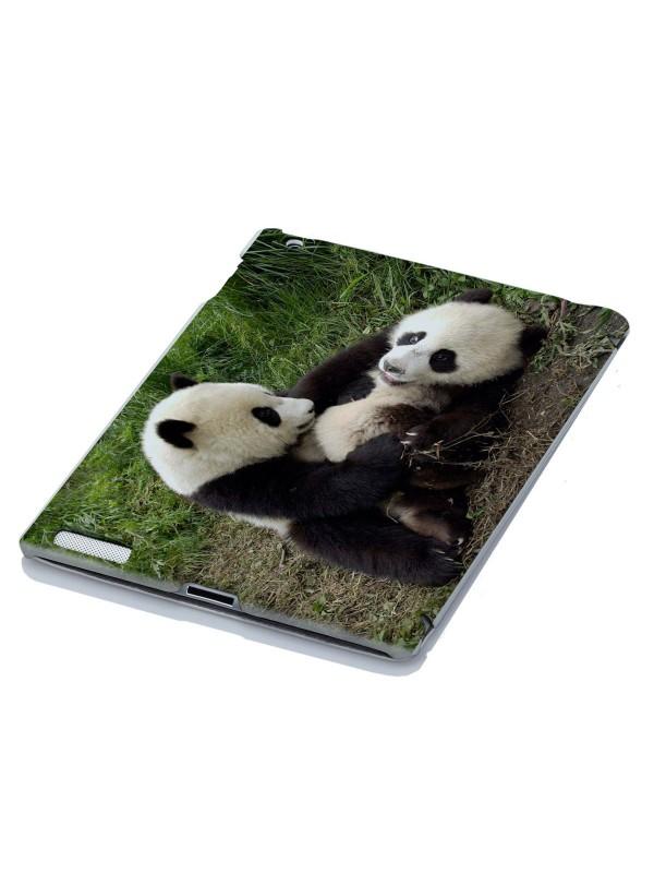 Животные - Панды непослушники