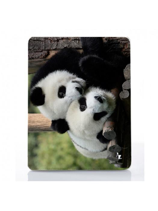 Панды в объективе