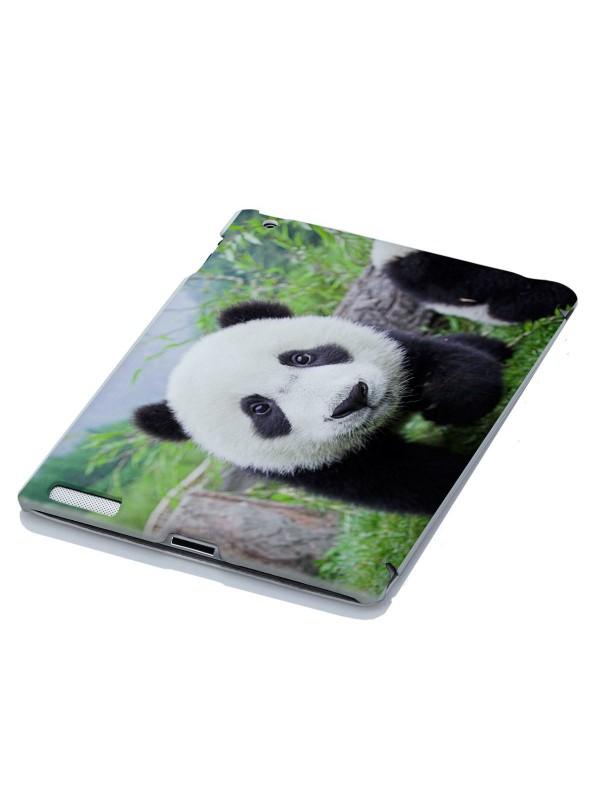 Животные - Панды в объективе