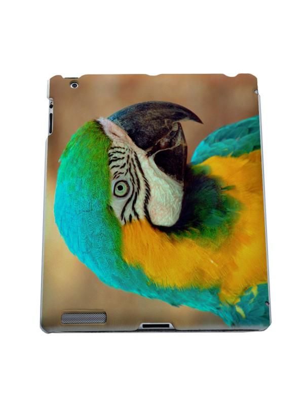 Животные - Попугаи