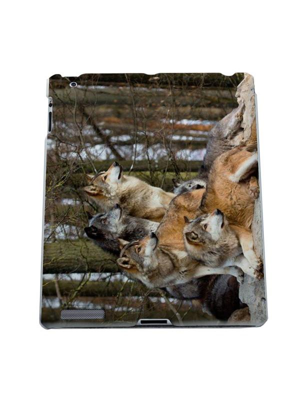 Животные - Волки