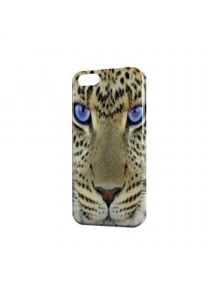 леопард синеглазый